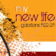 My-new-life-215x215